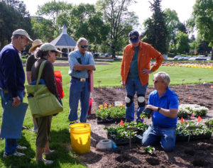 Master Gardeners working in a greenhouse. Larimer County Master Gardener Volunteer Program