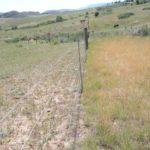 avoid overgrazing pastures, colorado